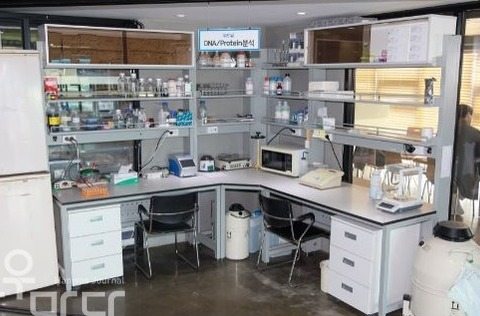 피드업 분석연구실